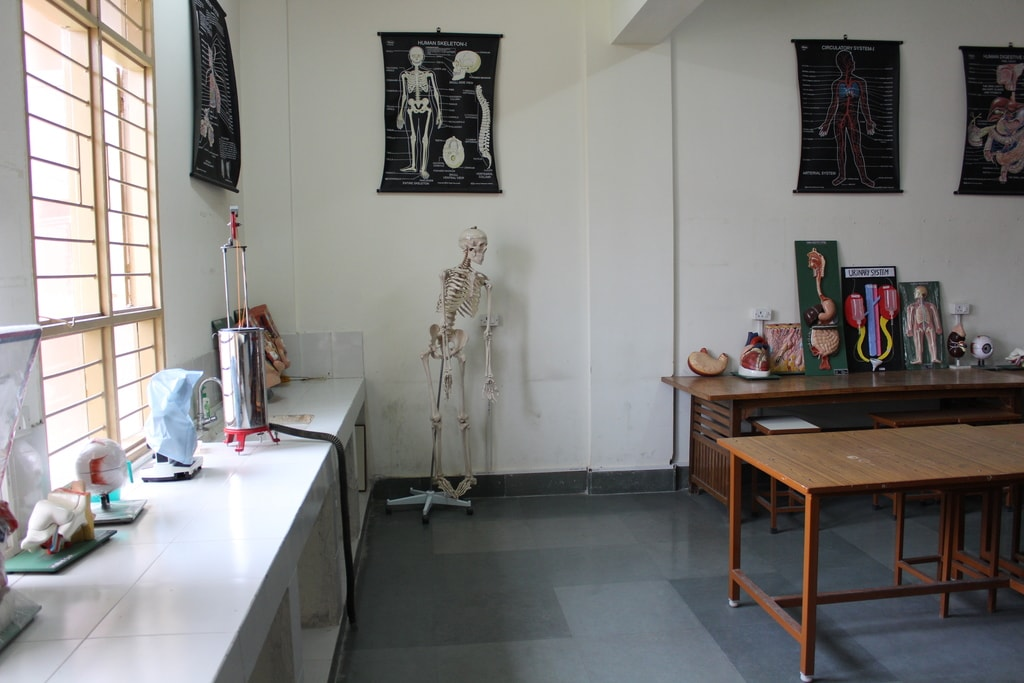 Human, Anatomy and Physiology Laboratory